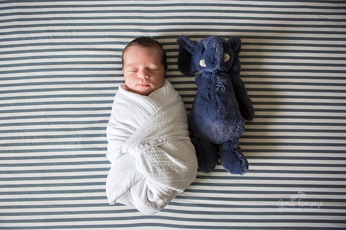 Swaddled baby next to a stuffed elephant